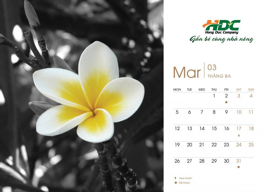 hong duc calendar 2016